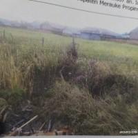 PT. Bank BRI Cabang Merauke melelang: 1 (satu) bidang tanah kosong dengan luas 587 m2 di Kab. Merauke